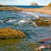 Bass Rock Fine Art Print