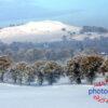 Bizzyberry Winter Snow Fine Art Print